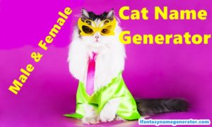 Cat Name Generator - Male/ Female Cat Names Generate & Warrior Cat